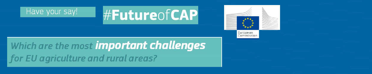 The CAP « Have your say »