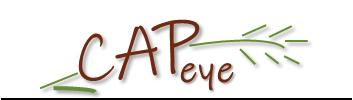 logo CAPeye sans texte